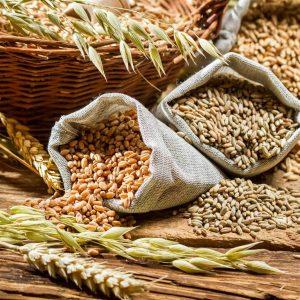 La fibra dietética: Qué es y qué tipos hay