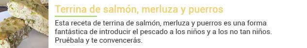 terrina-salmon-nochevieja